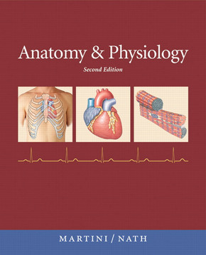 Anatomy & Physiology covers the same scope of material as FAP but it is shorter and assumes prerequisite coursework.