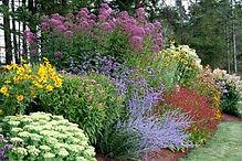 Perenial Garden.jpg