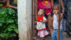kids through fence
