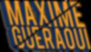 logo bleu jaune .png