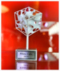 White Cube Award