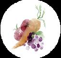 Obst und Gemüse der Saison – der Wandkalender
