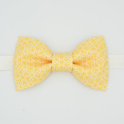 Yellow zellige