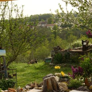 Vue de la yourte sur la vallée.