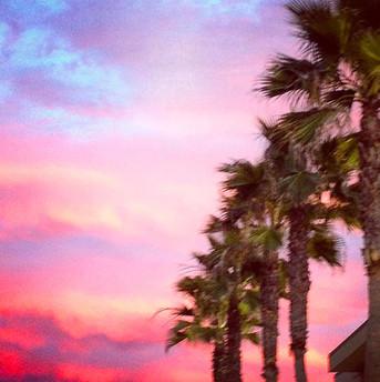 Pink Moment.jpg