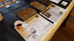Rwanda Peaberry Tasting