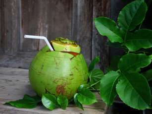 Bali_Lush_Coconut.jpg