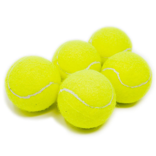 5 Pack Tennis Balls for Dogs, Dog Toys for Exercise and Training