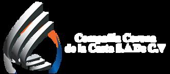 logo_cso.png