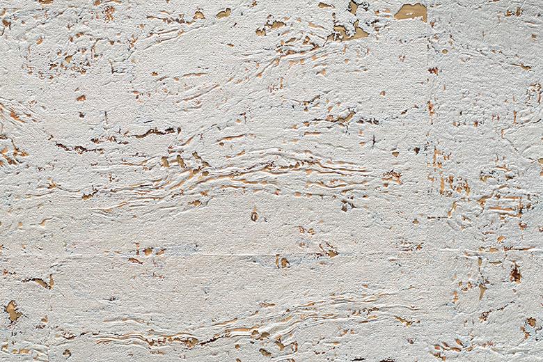 TWCCH24 White Alyssum