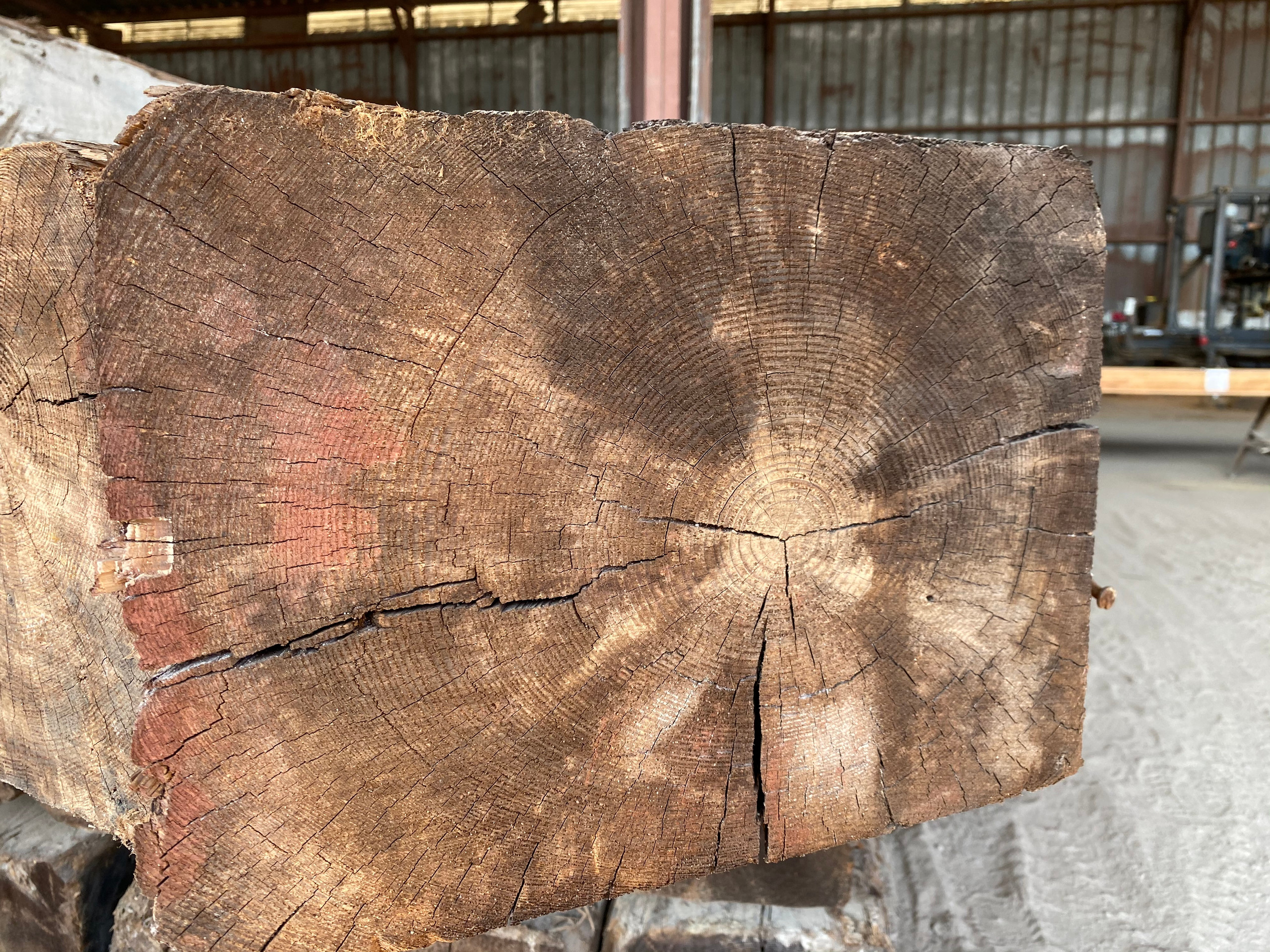 Longleaf Pine (Pinus palustris), for sale at American Timber Salvage