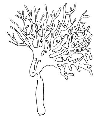 枝分かれ1 branching1