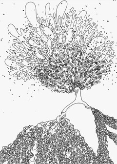 根 roots