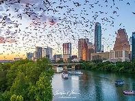 Austin bat cave.jpg