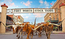 fort-worth-stockyards-cattle-drive.jpg