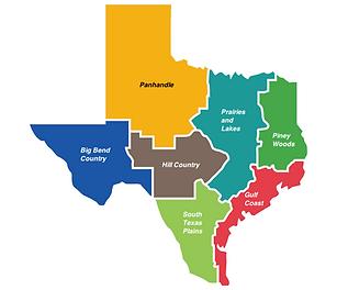 texas_regions_map.png