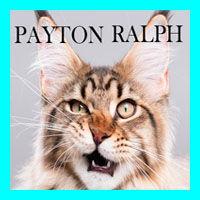 payton wix.jpg