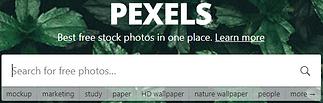 pexelsphotos.PNG