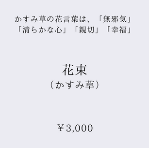 500x500 (17).png