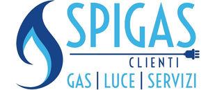 logo spicli_def.jpg