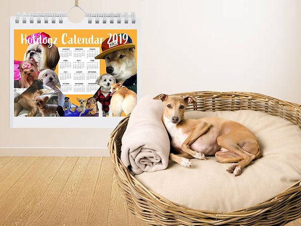 Dog bed with calendar.jpg