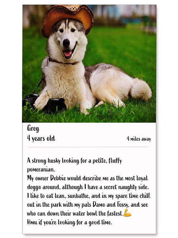 Single Dog tinder description profile.jp