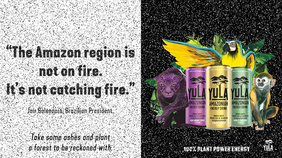 Yula - Energy From The Ashes Image 1.jpg