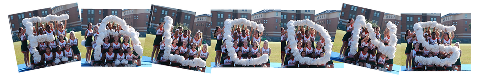 Falcon Cheer header (1).png