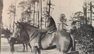 Fermata student on horse