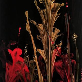 gold n red flowers.jpg