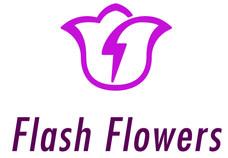 Flash_Flowers-01_edited.jpg