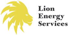 Lion_Energy-01_edited.jpg