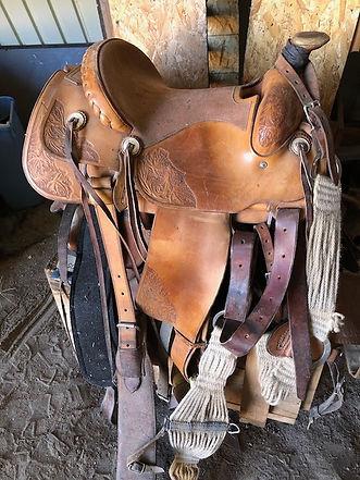 Denny Rose Saddle.jpeg