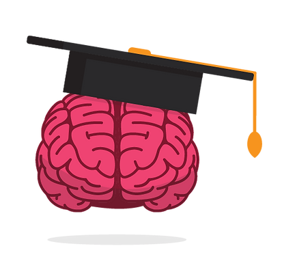 cerveau diplo-01.png