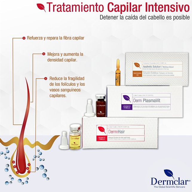 CAMPAÑA_CAPILAR_2-02.png