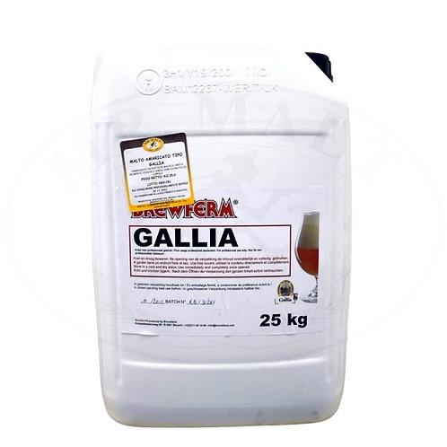BREWFERM GALLIA (Special Belge)