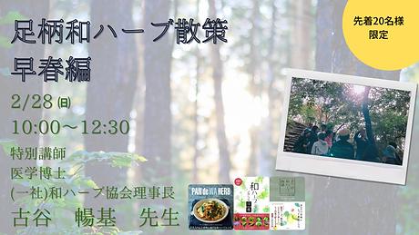 散策イベント画像.png