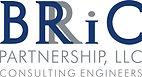 Logo - Normal Large - BRiC Partnership.jpg