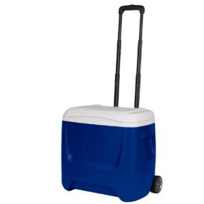 Igloo Cooler -28 qt.
