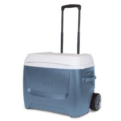 Igloo Cooler - 50 qt.