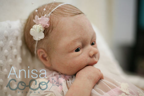 Anisa4-01.jpg