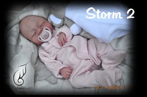 Storm2c.jpg