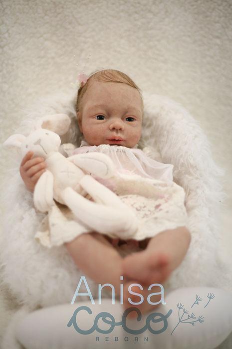 Anisa7-01.jpg
