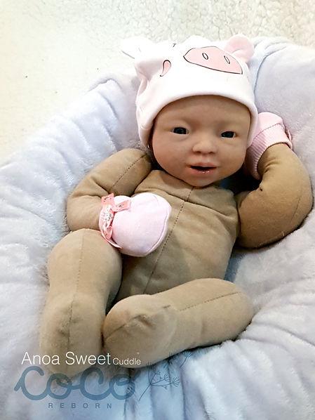 coco_sweet_cuddle1.jpg
