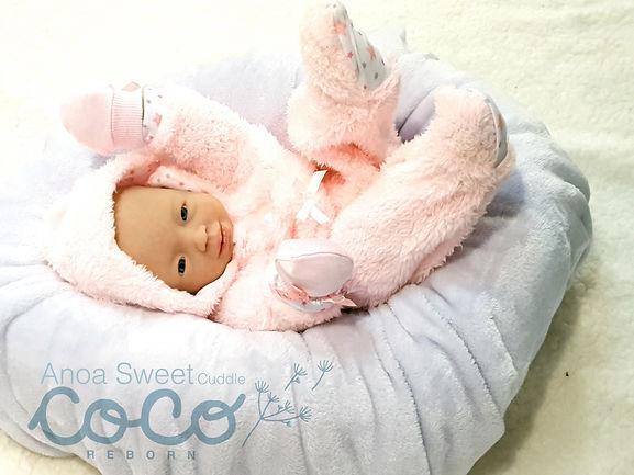 coco_sweet_cuddle4.jpg