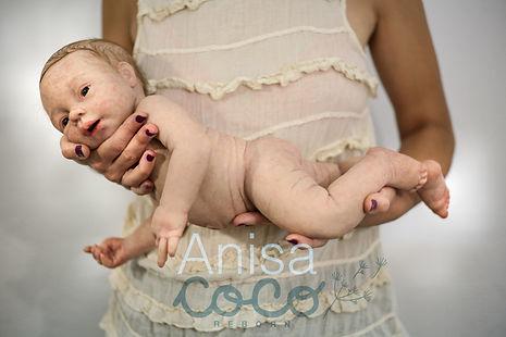 Anisa1-01.jpg