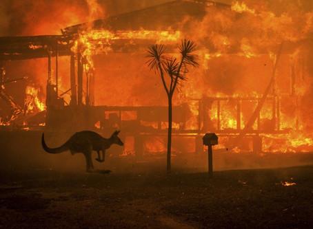 Partner Housing joins the bushfire recovery effort