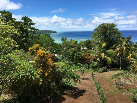 A new experience in the Solomon Islands