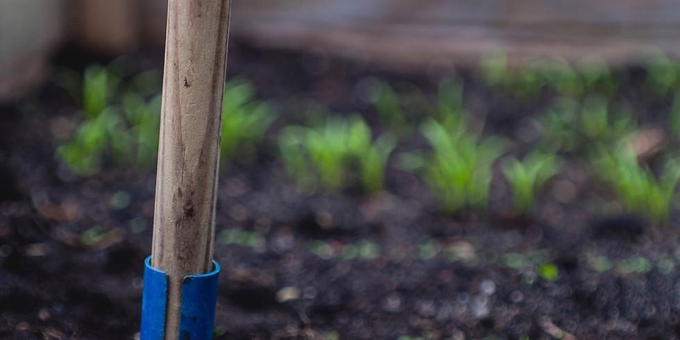 Pints+Planting w/ Garden Genie