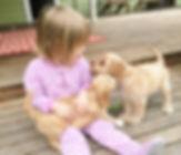 Clara and pups.jpg